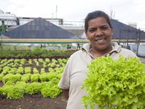 Horta Urbana usa resíduos de comida para a compostagem no shopping Eldorado