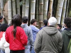 Curso de bambu no instituto pindorama