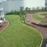 telhado verde em pátio de condominio