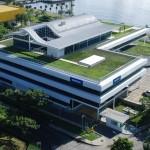prédio com grama no telhado