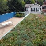 terraco de grama na cobertura