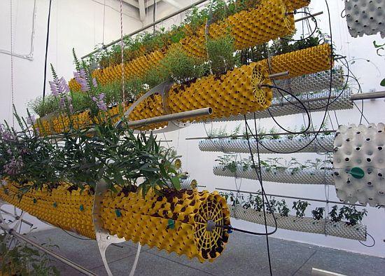Instalacao_agricultura_arquitetura_bienal_de_veneza_02