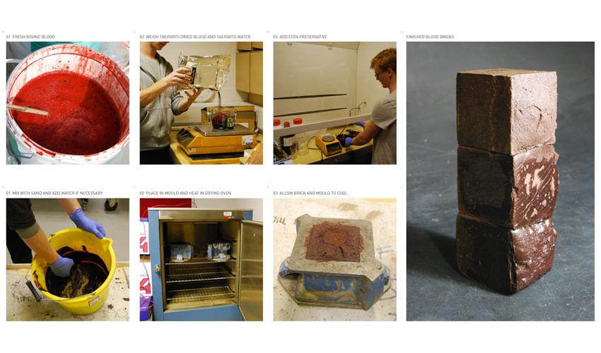 Processo de fabricação de tijolo de sangue