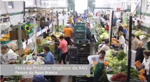 feira-organica