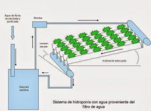 como funciona o sistema de hidroponia