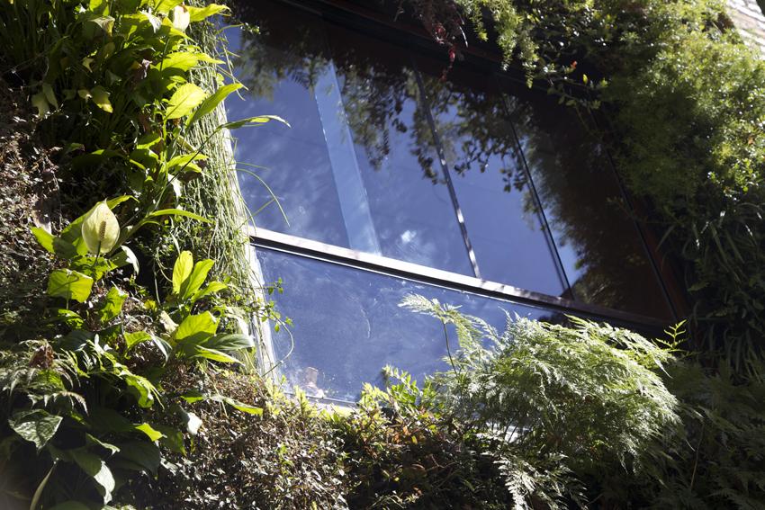 janela-jardim-vertical
