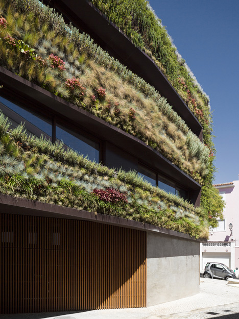 jardim vertical lisboa:Green Living Walls Vertical Garden