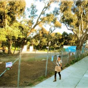 terrenos-vazios-viram-hortas-urbanas