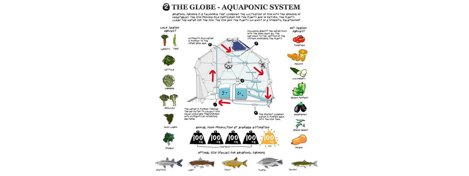 globo-sistema-aquaponico