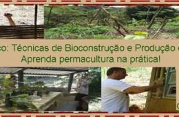 Curso Prático: Técnicas de Bioconstrução e Produção de Alimentos