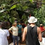 curso-pdc-permacultura-design-consultoria-no-ecocentro-ipec-3