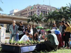 horta-urbana-noocity
