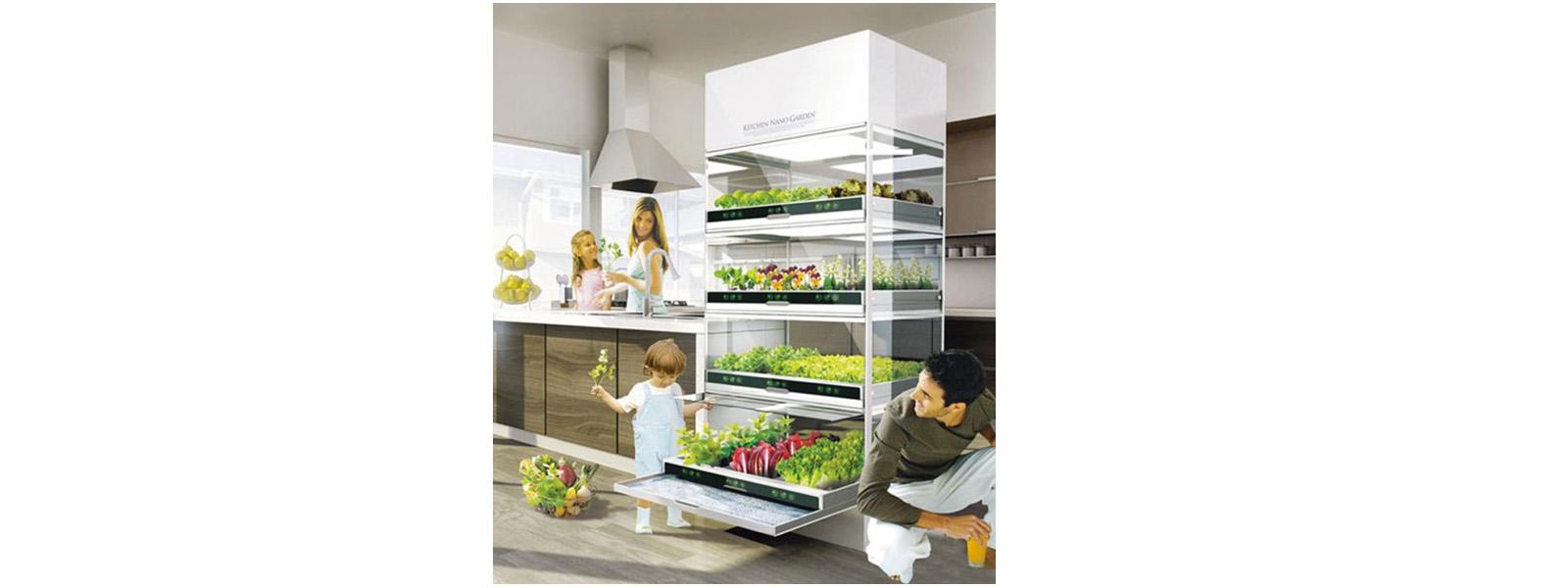 Horta Hidropônica para cozinha de apartamentos