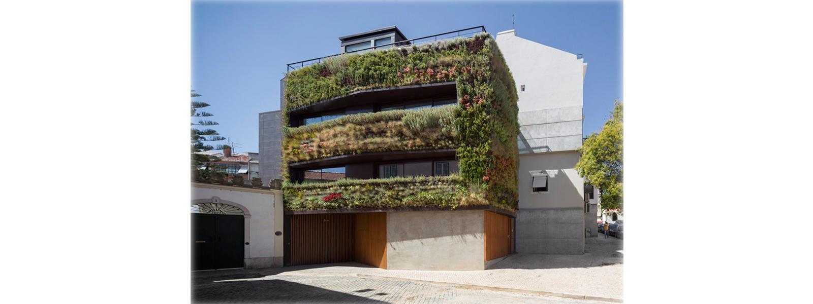 casa.parede-verde-lisboa