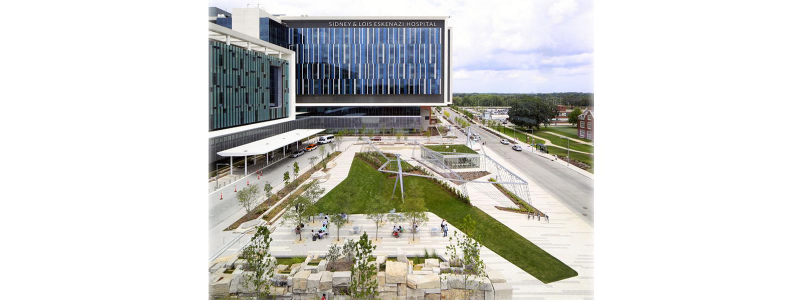 hospital-horta-comunitaria-beneficia-pacientes
