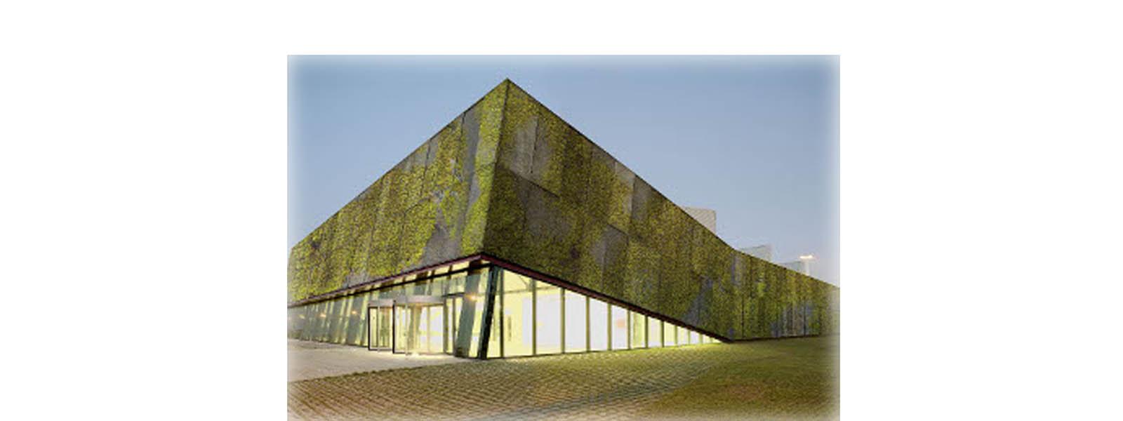 concreto-ecologico22